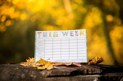 A WEEKLY PLANNER - DESIGN 2