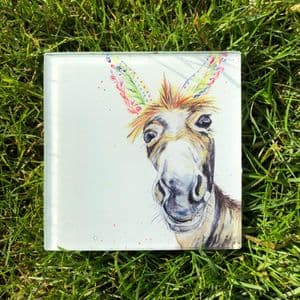 DYLAN THE DONKEY ECO-COASTER