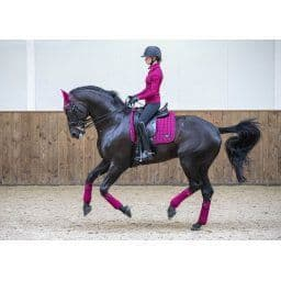 LOIRE DRESSAGE COLLECTION