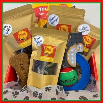Treat and Toy Gift Box