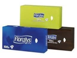 Extra Large Tissues 2Ply Pack 100
