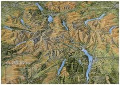 Fir Tree Map - Celebration of Lake and Mountain - Paper
