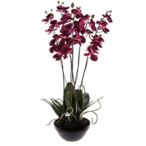 Artificial Phalaenopsis Potted Orchid Fuschia 82 cm