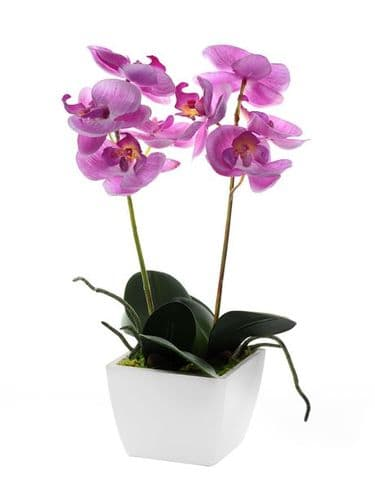 Artificial Potted Mini Orchid Pale Pink 33 cm