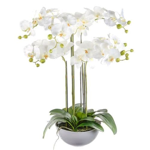 Artificial Potted Prestige Orchid White 72 cm