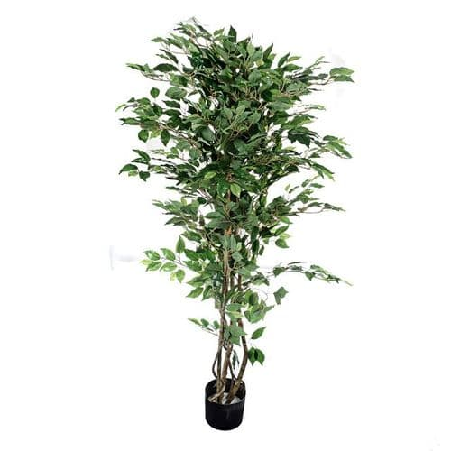 Potted Ficus Tree Green 152 cm
