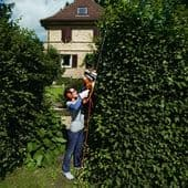 Electric & Cordless Hedge Trimmers