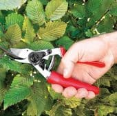 Hand Tools for Tree & Shrub Maintenance