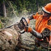 Stihl Chainsaws for Forestry Work