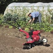 Tillers, Cultivators & Accessories